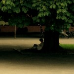 Vilddyr-short-film-directed-by-Ask-Hasselbalch-and-produced-by-Thomas Yong-Lykke-under-tree